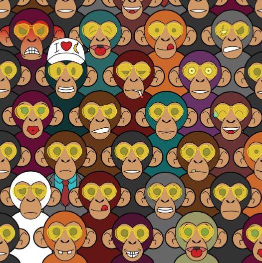 feed the monkey